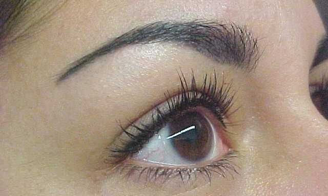 ladies eye and brow with makeup